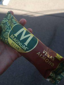Veganes Magnum