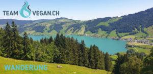 Wanderum Teamvegan.ch 2020
