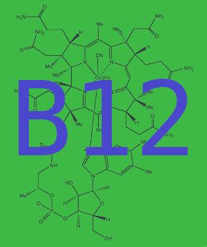 Bio Vitamin B12 – Neue Wege Der Nahrungsergänzung