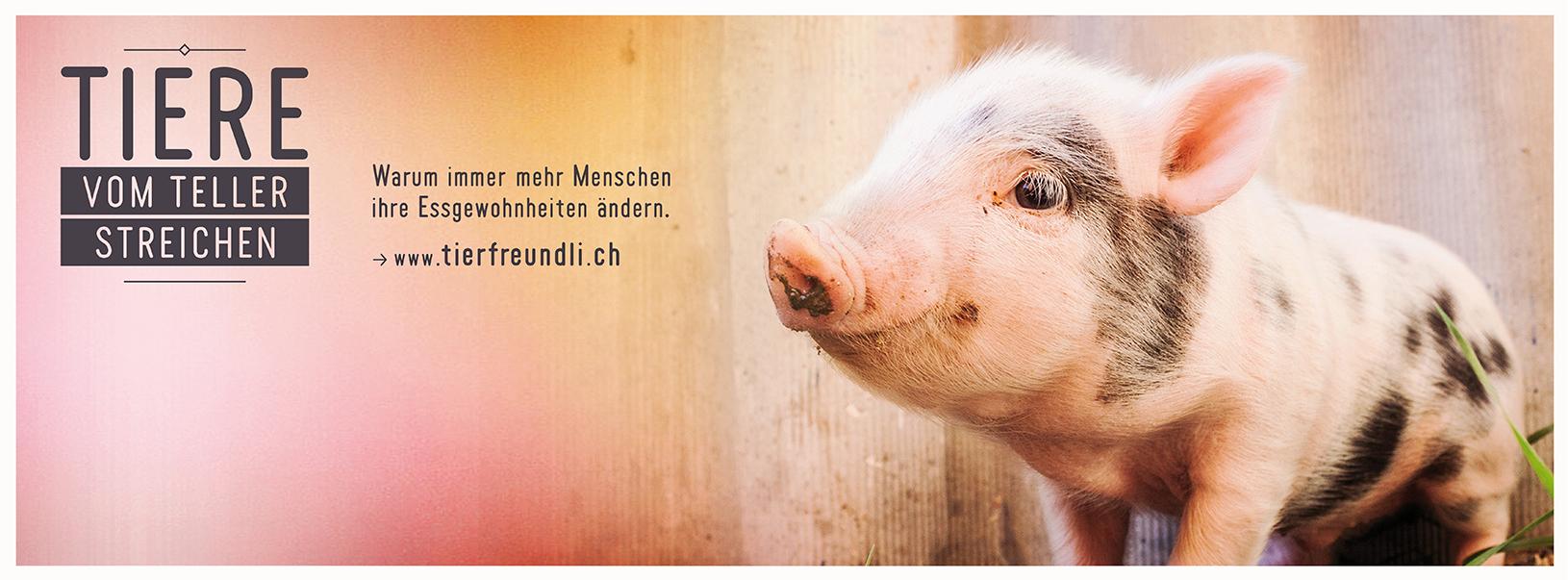 tierfreundli.ch 2017