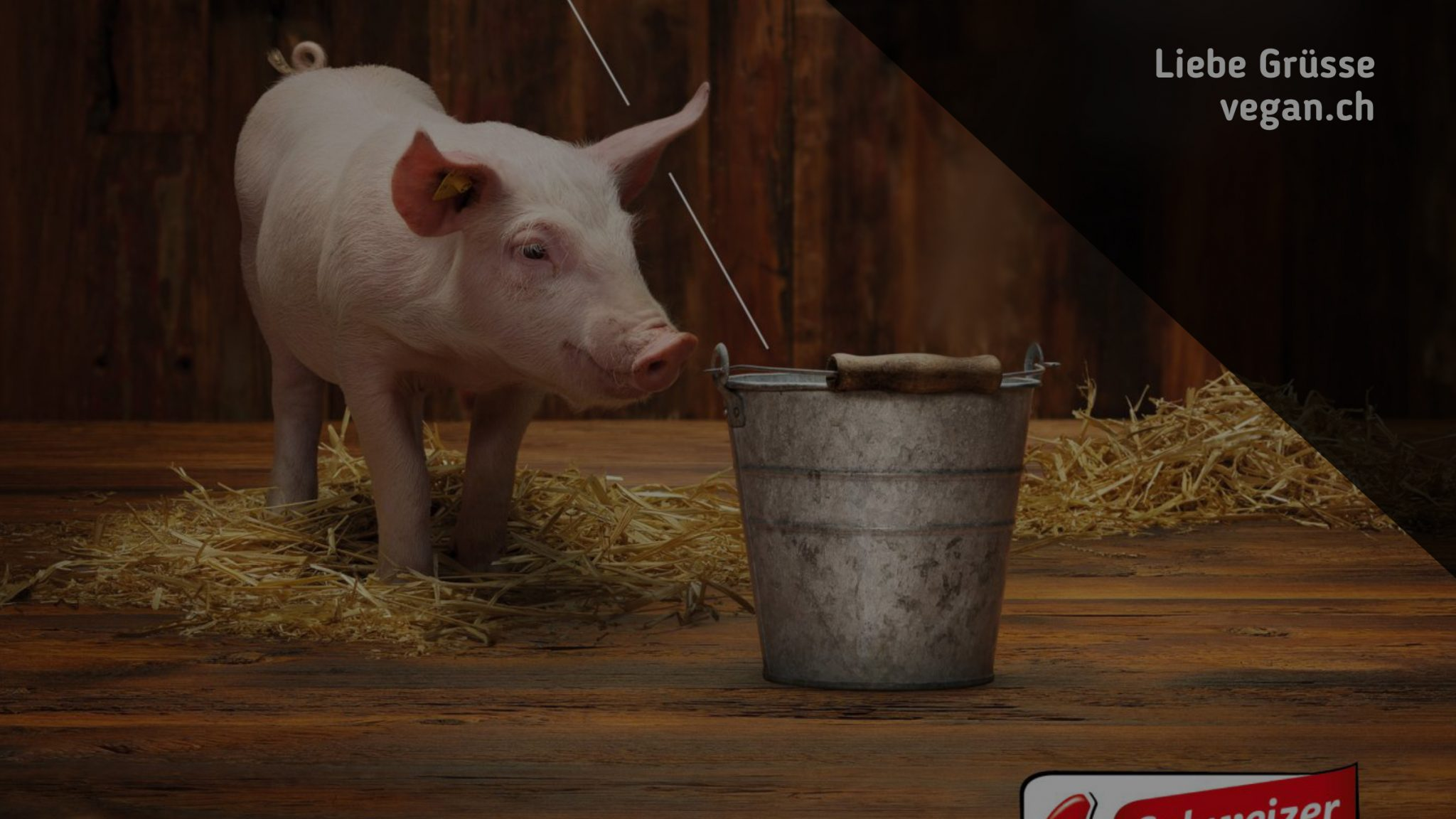 Schweizer Fleisch: Ein bisschen ethisch