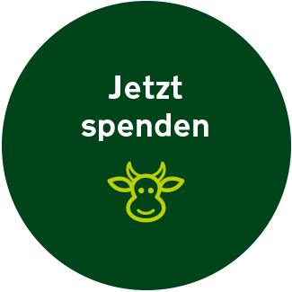 Spendenbutton Website Vgs 322x322px Aktiv
