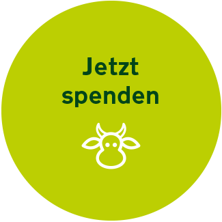 Spendenbutton Website Vgs 322x322px Inaktiv