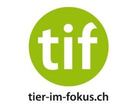 Rezept 26. November: Kartoffelstock mit Morcheltraum von tier-im-fokus.ch